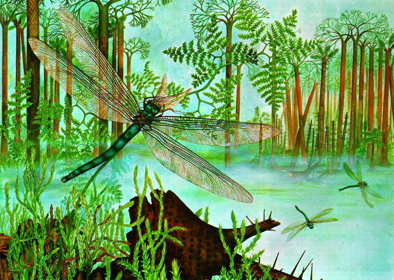 Картинки по запросу Каменноугольный период, животные каменноугольного периода