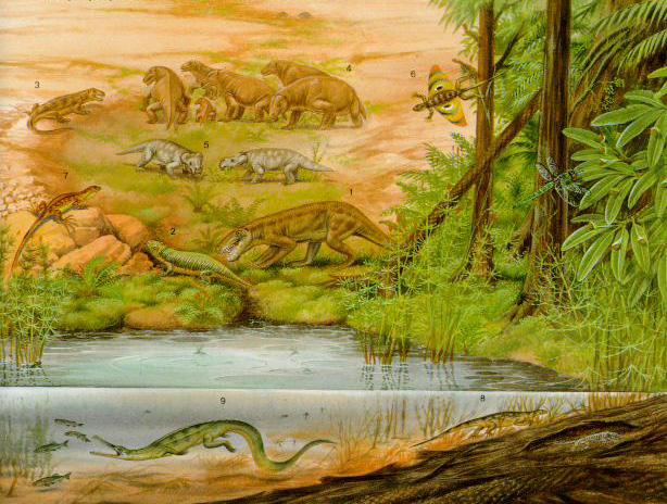Картинки по запросу Пермский период, животные пермского периода