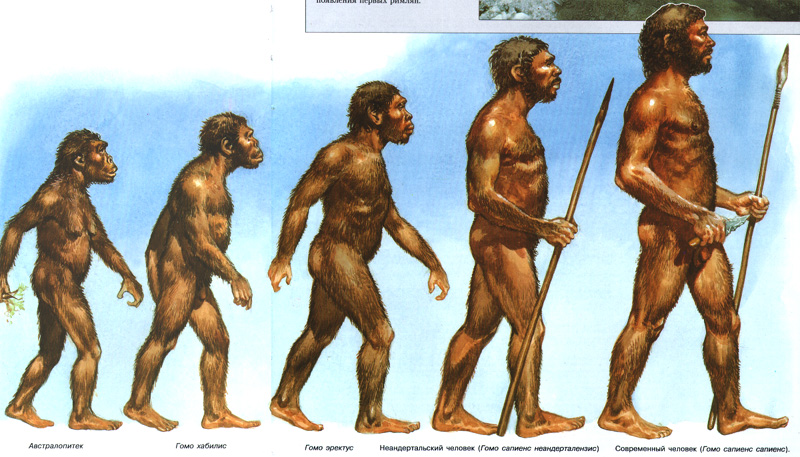 рисунки древних людей в картинках