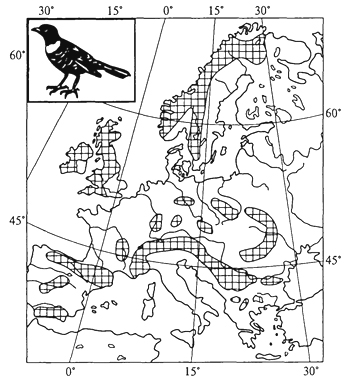 Рис. 43. Арктоальпийский ареал белозобого дрозда (Г. Делаттин, 1967)