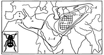 Рис. 50. Ареал рода жуки-листоеды; цифрами обозначено число видов в отдельных частях ареала; очаг видового разнообразия заштрихован (Г.М.Абдурахманов и др., 2001)
