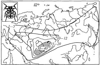 Рис. 51. Ареал подрода скрытоглавы азиатские рода жуки-листоеды; цифрами обозначено число видов в отдельных частях ареала; очаг видового разнообразия заштрихован (Г. М.Абдурахманов и др., 2001)