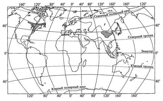 Рис. 52. Ареал рода клен с центрами таксономического разнообразия (заштрихован) (Г.Вальтер, 1982)